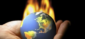 Dopady klimatických změn na přírodu.